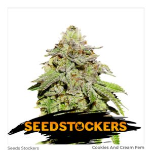 Seed Stockers – Cookies and Cream