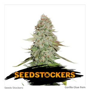 Seed Stockers – Gorilla Glue