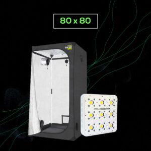 Pack LED Indoor 80×80 – 1 Apollo Evolution 9
