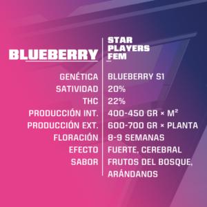 BSF – Blueberry Fem
