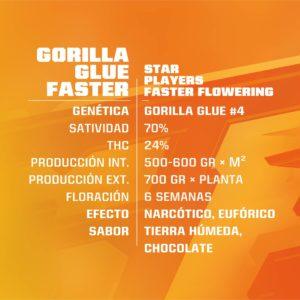 BSF – Gorilla Glue Faster Flowering